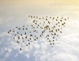 14 B2B Content Marketing Fakten und was sie für Ihr Unternehmen bedeuten